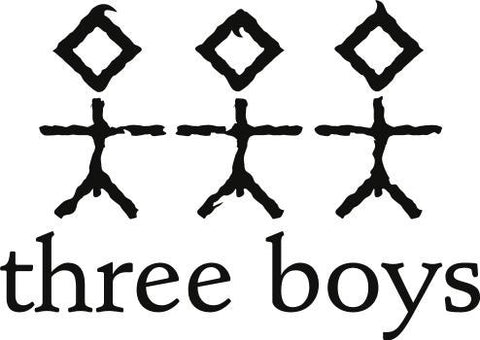 Three Boys Porter 330mL Can