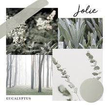 Load image into Gallery viewer, Jolie Paint - Eucalyptus