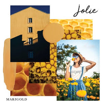 Load image into Gallery viewer, Jolie Paint - Marigold