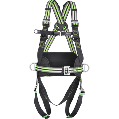 2-point harness with positioning belt