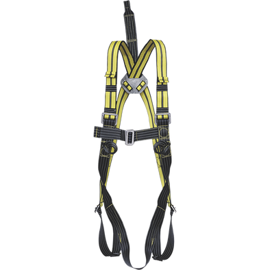 Atex 2-point harness with extension