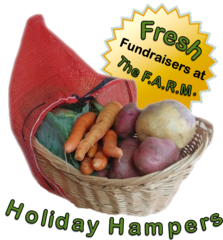 Baby Logan - Holiday Hamper Fundraiser
