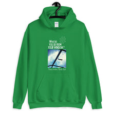 Load image into Gallery viewer, Renee's Window | Florida, USA | Unisex Hoodie
