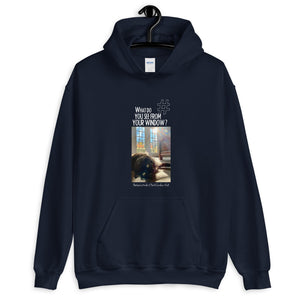 Barbara's Window | North Carolina, USA | Unisex Hoodie