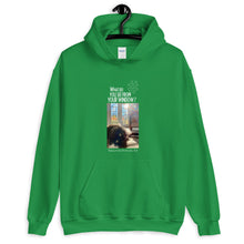Load image into Gallery viewer, Barbara's Window | North Carolina, USA | Unisex Hoodie