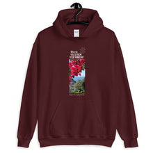 Load image into Gallery viewer, Shayne's View | Sydney, Australia | Unisex Hoodie