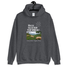 Load image into Gallery viewer, Cristina's Window | Transylvania, Romania | Unisex Hoodie