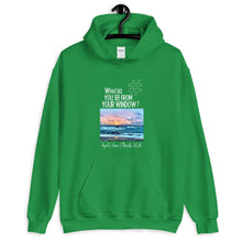 Load image into Gallery viewer, April's View | Florida, USA | Unisex Hoodie
