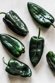 "PEPPER -POBLANO- 4"" - Springbank Greenhouses"
