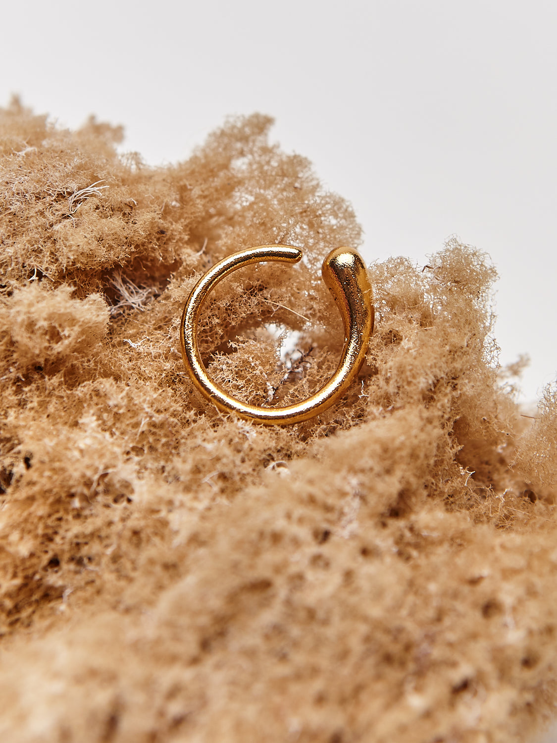 detail shot of gold ring