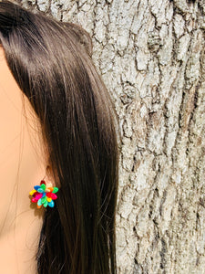 Colorful  Melon Seeds Stud Earrings