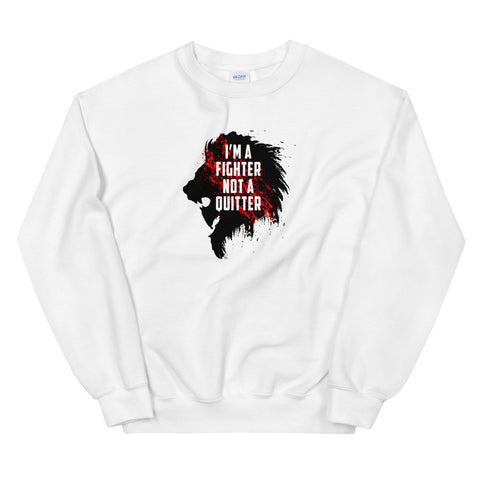 cool sweatshirt - I'm a fighter not a quitter