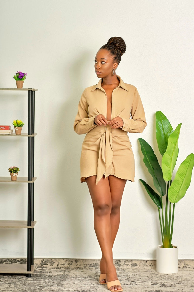 Got to be Me Long Sleeve Collared Little Brown Dress with Deep Plunge Neckline