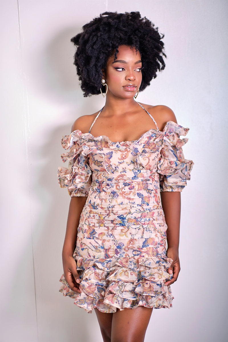 Oh So Pretty Vintage Print Ruffle Mini Dress