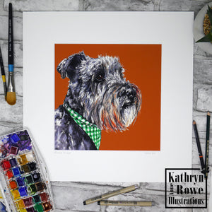 Miniature Schnauzer Print  (Mounted)