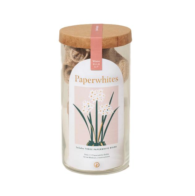 Winter Bulb Grow Kit