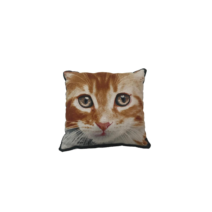 Cat Eyes Balsam Pillow