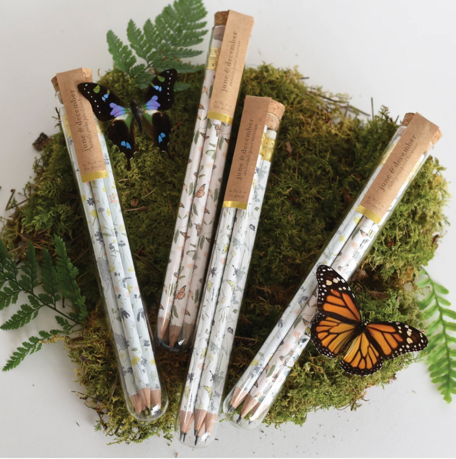 Glass Pencil Terrarium - Monarchs