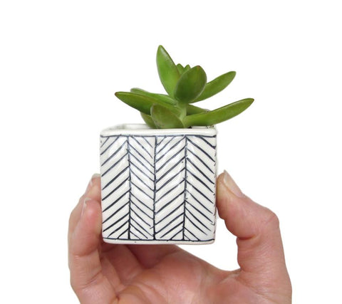 Herringbone Square Planter