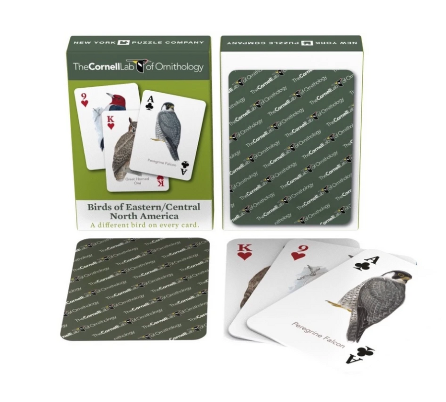 Birds of Eastern North America Playing Cards