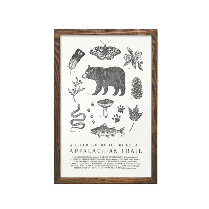 Appalachian Trail Field Guide Print - 11 x 17