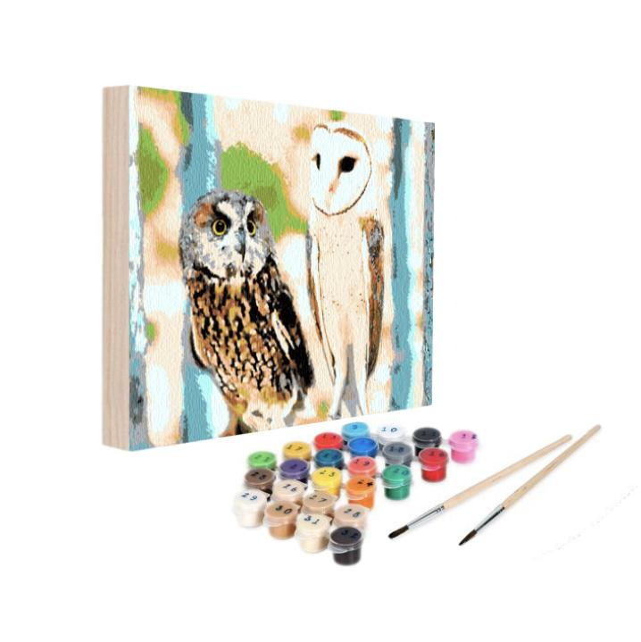 Paint By Numbers Kit - Knock, Knock