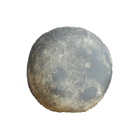 Silver Moon Pillow