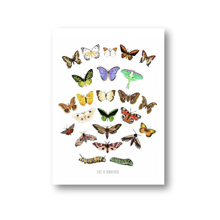 """Life is Beautiful"" Butterfly Print - 12 x 18"