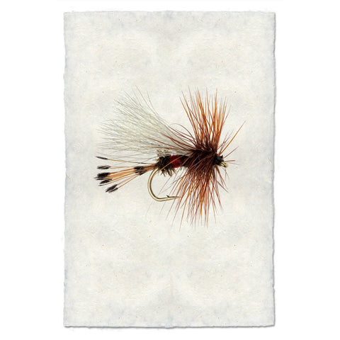 Archival Handmade Paper Royal Wulff Flyfishing Fly Print