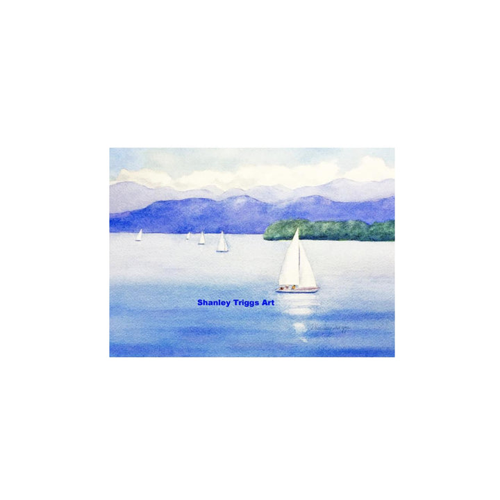 Tiny Framed Print - Lake Champlain Boats
