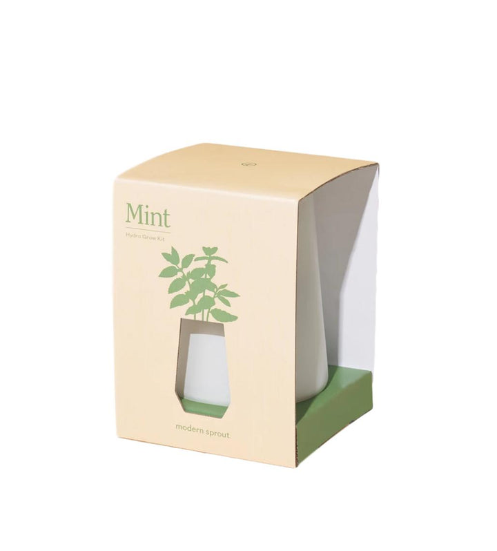 Tapered Tumbler Indoor Garden - Mint