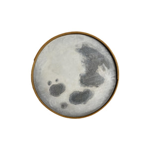 "Hannah Sachse Hand Painted Moon with Ash Frame 8"" Light Grey"