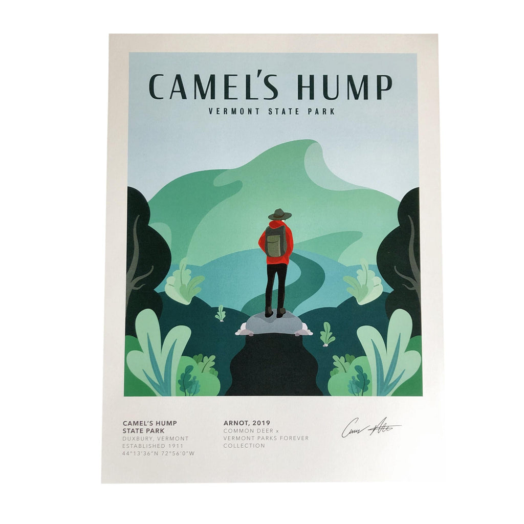 Vermont Parks Collection Print: Camel's Hump State Park