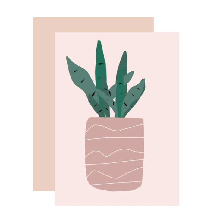 Cacti in Pink Planter Greeting Card - AMP2