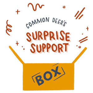 Surprise Support Subscription Box