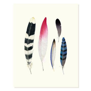 Feather Collection Card - FD2
