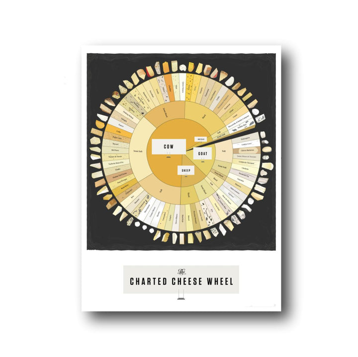 Charted Cheese Wheel Print - 16 x 20
