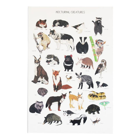 Nocturnal Creatures Print