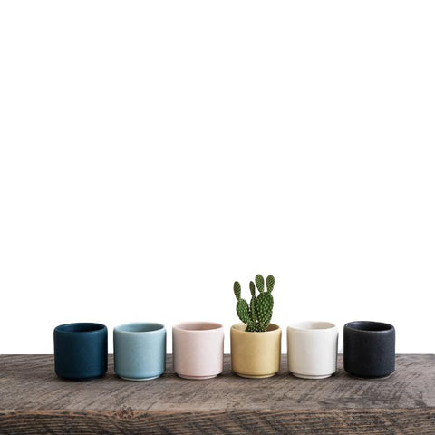 Mini Ceramic Planter