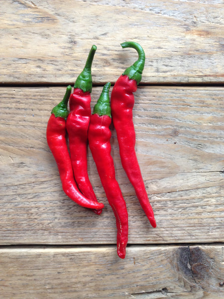 Cayenne Long Slim Hot Pepper Seeds