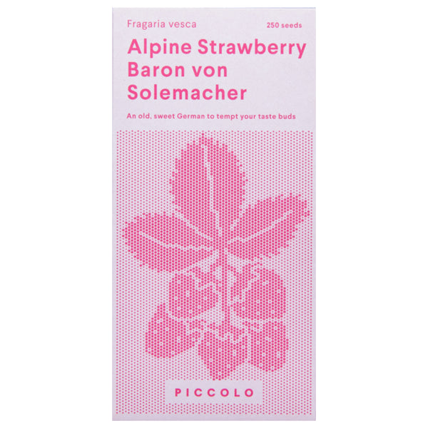 Alpine Strawberry Baron Von Solemacher Seeds