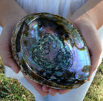 LARGE ABALONE SHELL Smudge Bowl, Natural Abalone Sea Shell for Smudging
