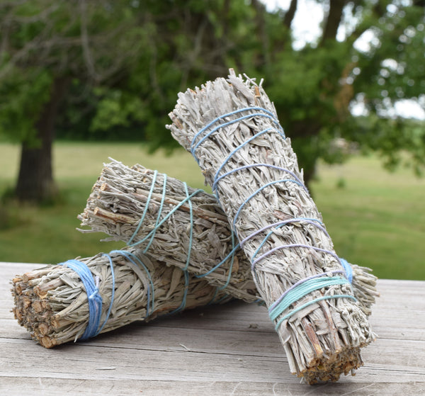 BLUE SAGE SMUDGE STICKS - 3 pk of Wild Blue Sage Sticks, Grandmother Sage