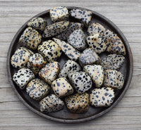 Dalmatian Jasper crystal - Fun & Adventure, Inner Child, Fireman, Dog Lover Gift