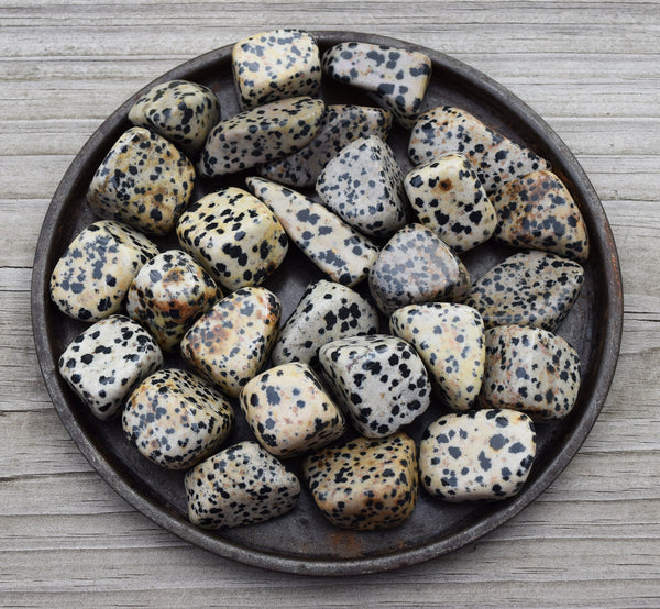Dalmatian Jasper Inner Child Stone, Adventure Loyalty Fidelity, Fireman, Dog Lover