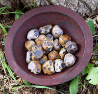 LEOPARD JASPER Awaken Your Passion & Sensuality, Hot Pursuit of Your Goals