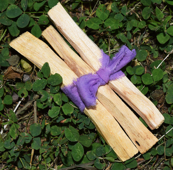 "PALO SANTO STICKS - Sacred ""Holy Wood"" Incense from South America"