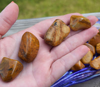 YELLOW JASPER Companion for Social Confidence, Dispel Negativity, Gossip & Jealousy
