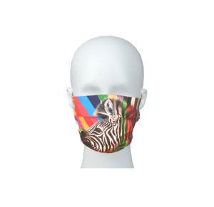 Zebra in Colour Mask