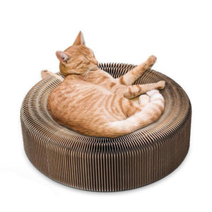 Cat Scratching Lounger Seat